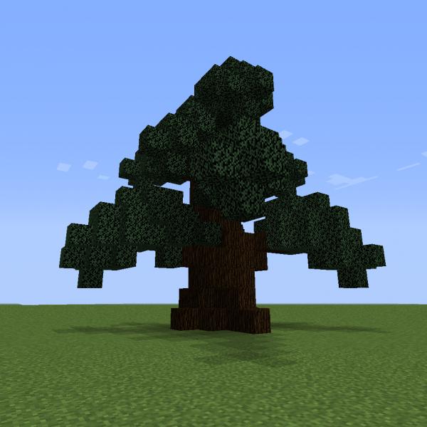 Spruce Tree S