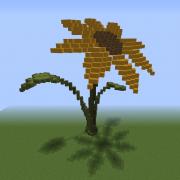 Giant Wildflower