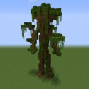 Jungle Ent