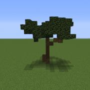 Savanna Tree 3