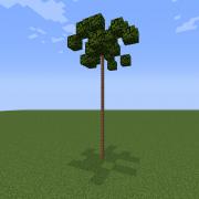 Thin Palm Tree 2