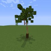 Thin Palm Tree 3